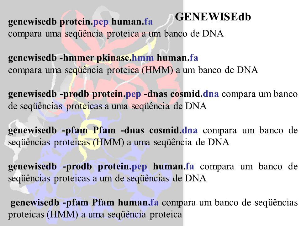 GENEWISEdb genewisedb protein.pep human.fa