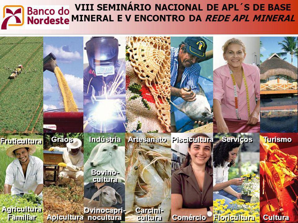 VIII SEMINÁRIO NACIONAL DE APL´S DE BASE MINERAL E V ENCONTRO DA REDE APL MINERAL