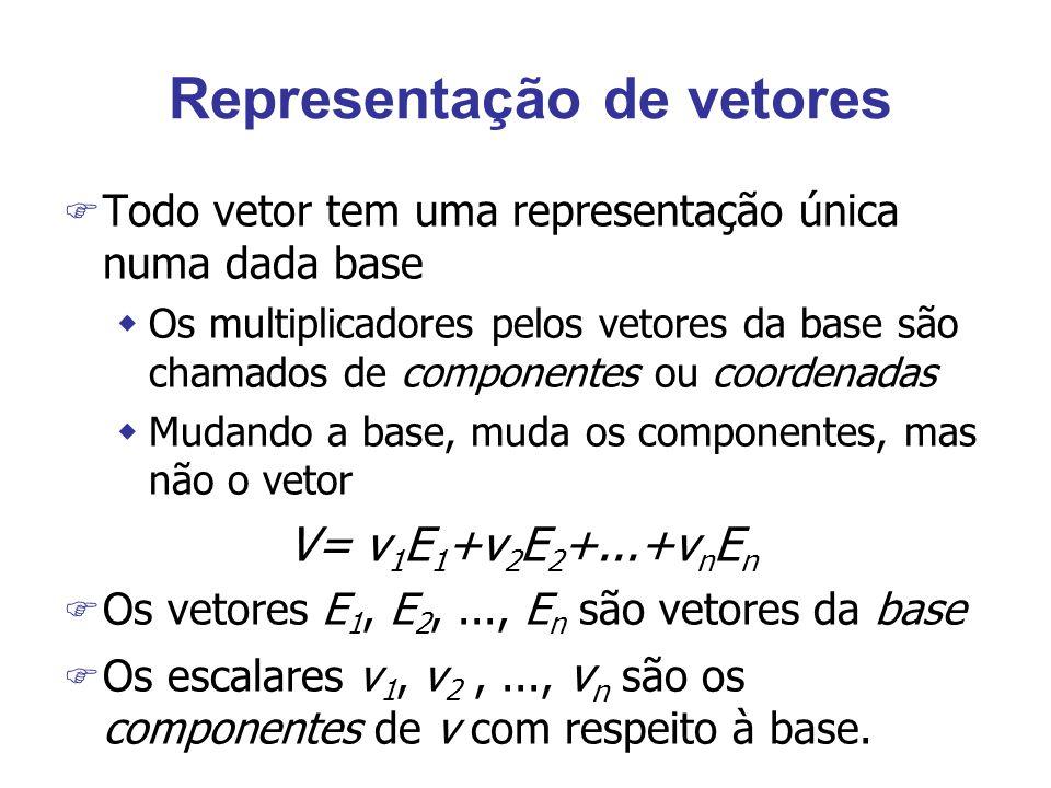 Representação de vetores
