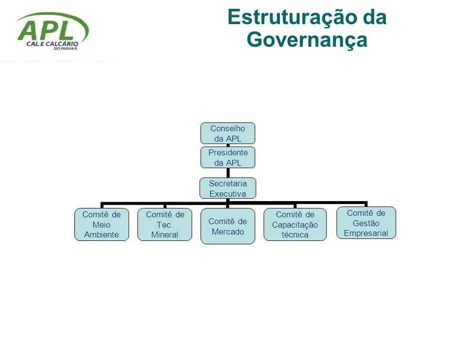 Estruturação da Governança