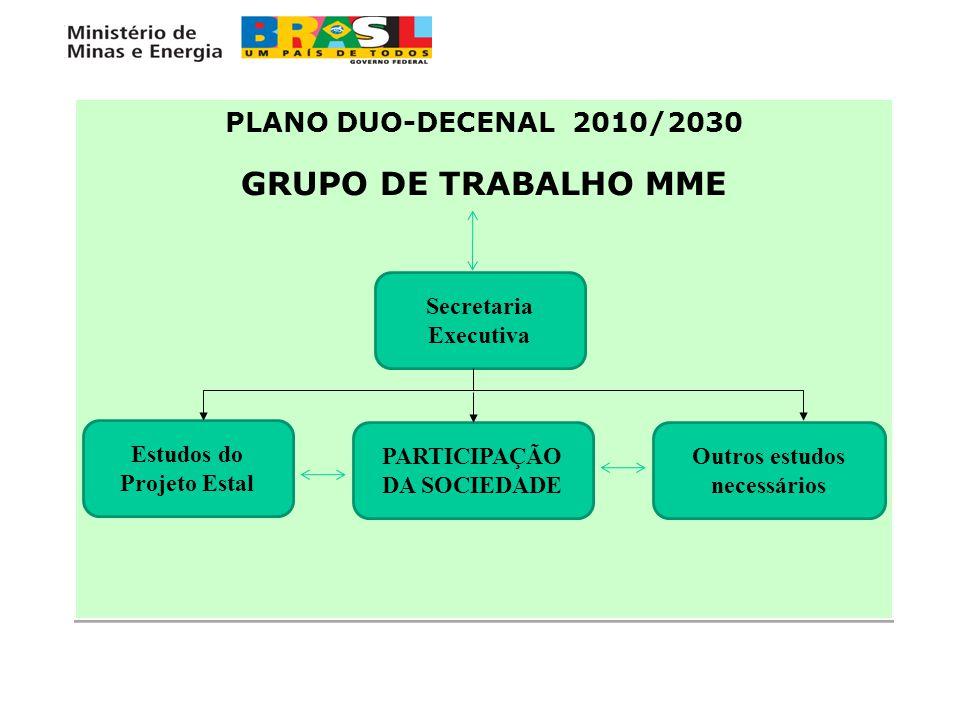 GRUPO DE TRABALHO MME PLANO DUO-DECENAL 2010/2030 Secretaria Executiva