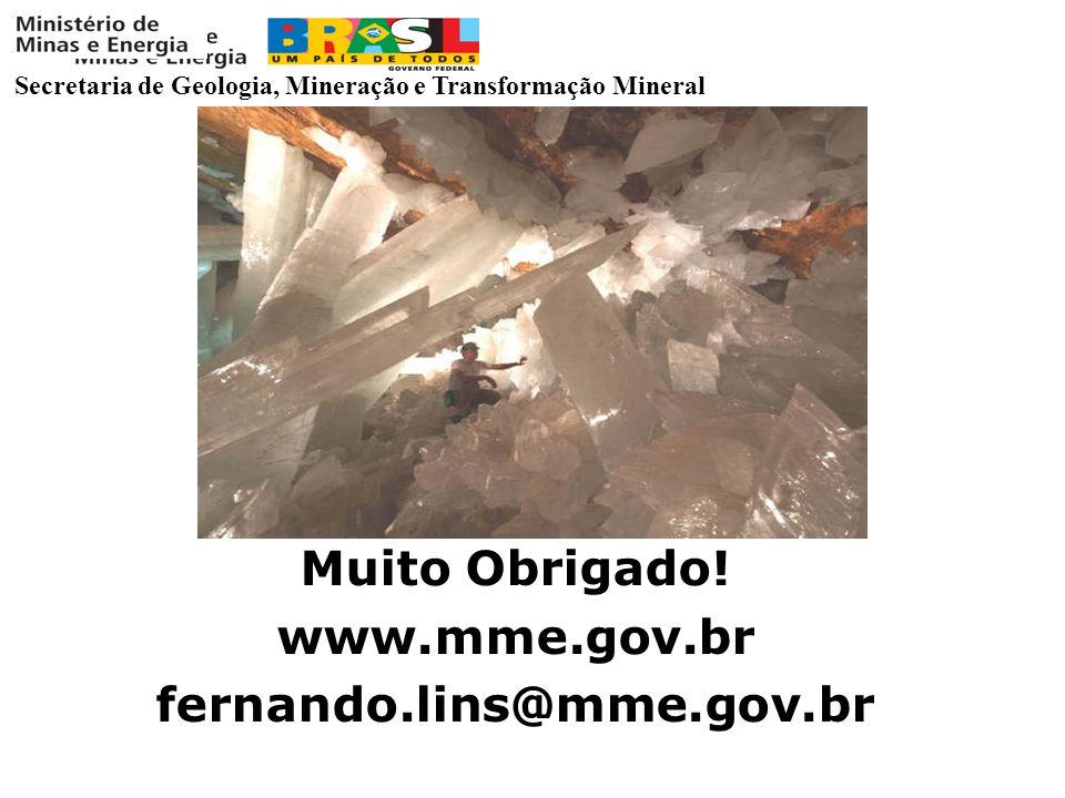 Muito Obrigado! www.mme.gov.br fernando.lins@mme.gov.br