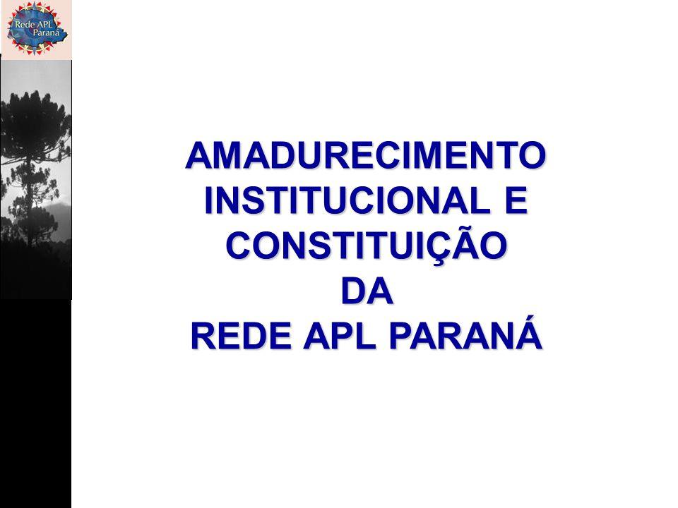AMADURECIMENTO INSTITUCIONAL E CONSTITUIÇÃO DA REDE APL PARANÁ