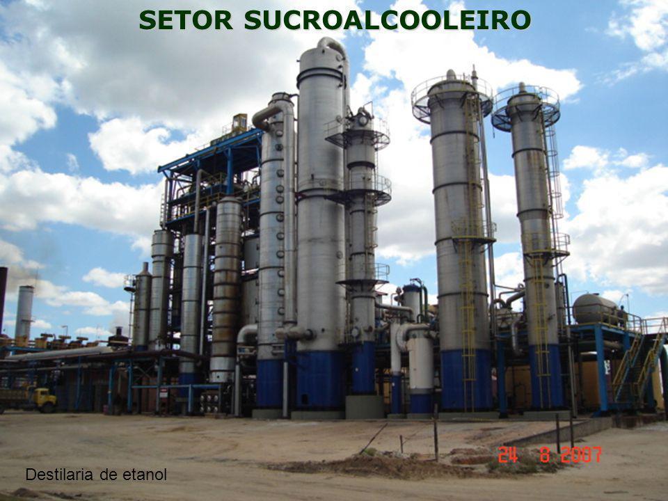 SETOR SUCROALCOOLEIRO