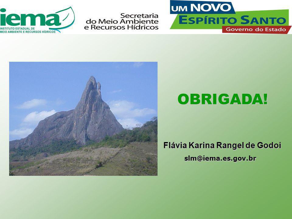 Flávia Karina Rangel de Godoi