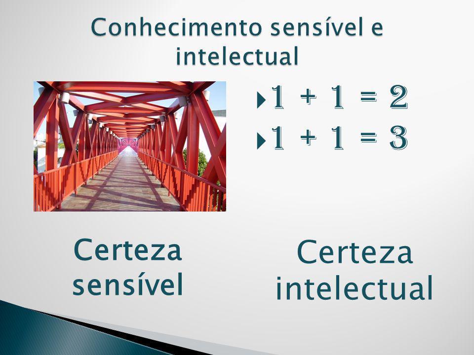 Conhecimento sensível e intelectual