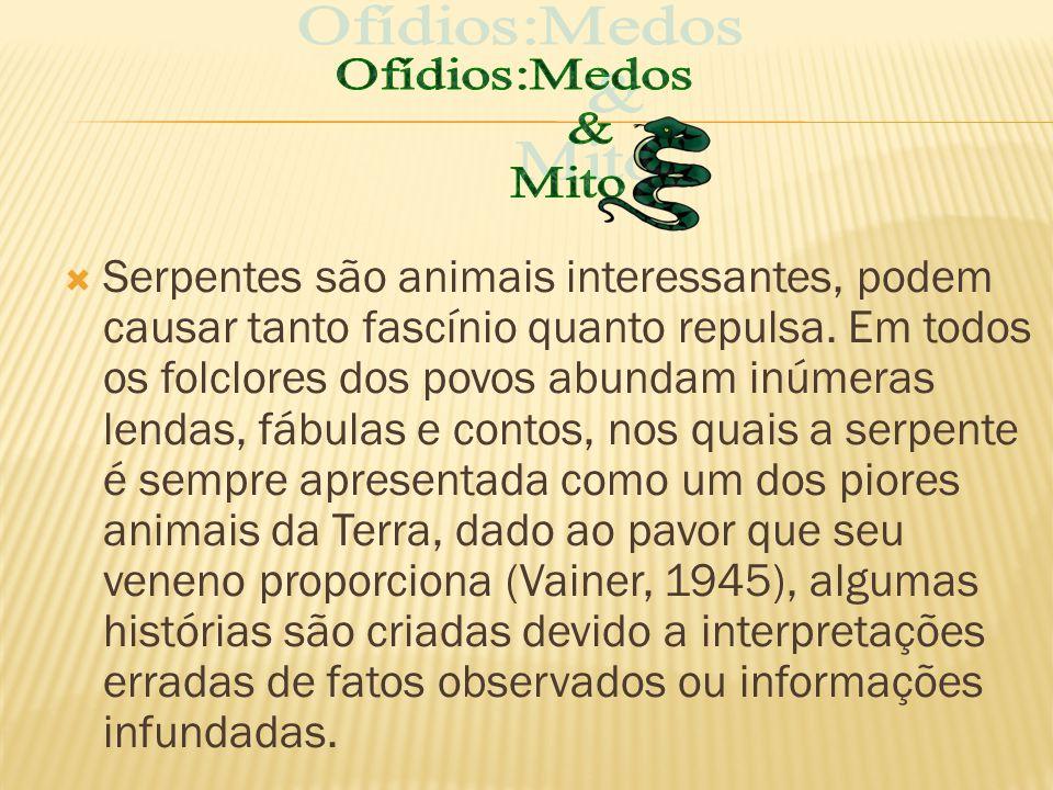 Ofídios:Medos & Mito.
