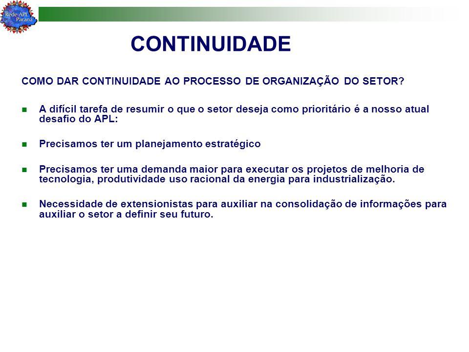 CONTINUIDADE COMO DAR CONTINUIDADE AO PROCESSO DE ORGANIZAÇÃO DO SETOR
