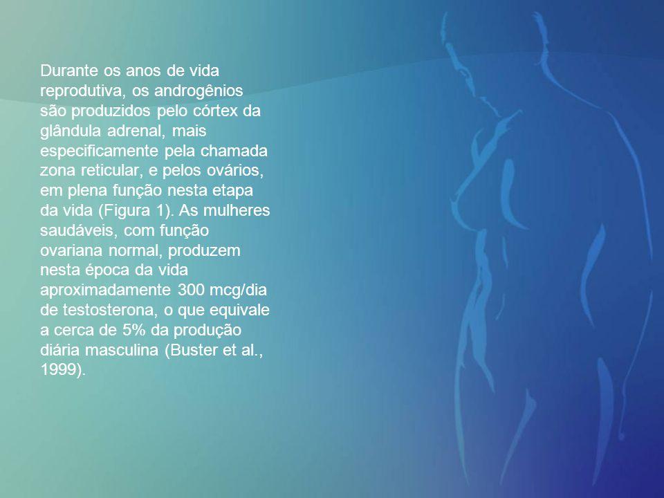 Durante os anos de vida reprodutiva, os androgênios são produzidos pelo córtex da glândula adrenal, mais especificamente pela chamada zona reticular, e pelos ovários, em plena função nesta etapa da vida (Figura 1).