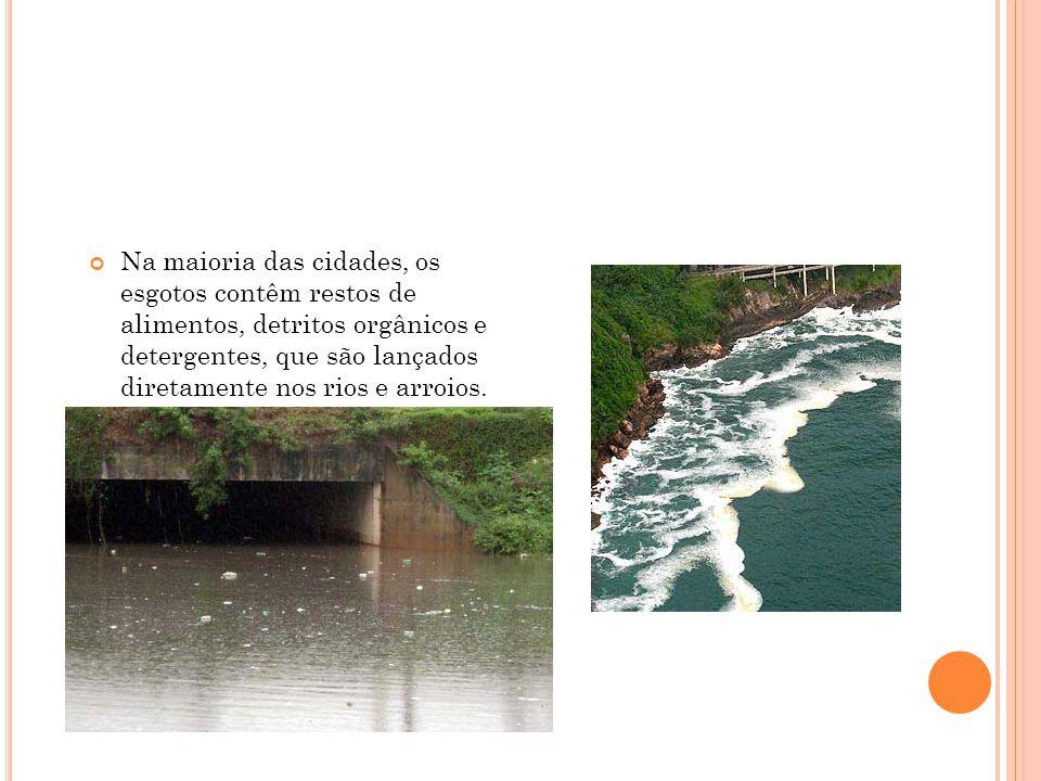 Na maioria das cidades, os esgotos contêm restos de alimentos, detritos orgânicos e detergentes, que são lançados diretamente nos rios e arroios.