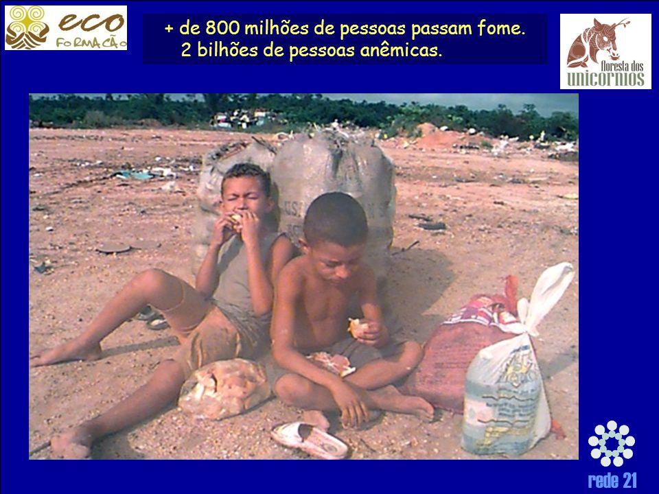 + de 800 milhões de pessoas passam fome. 2 bilhões de pessoas anêmicas.