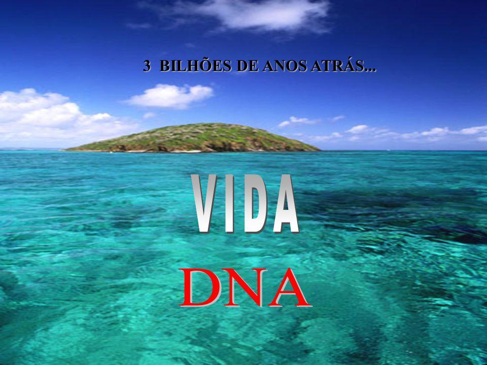 VIDA DNA 3 BILHÕES DE ANOS ATRÁS...
