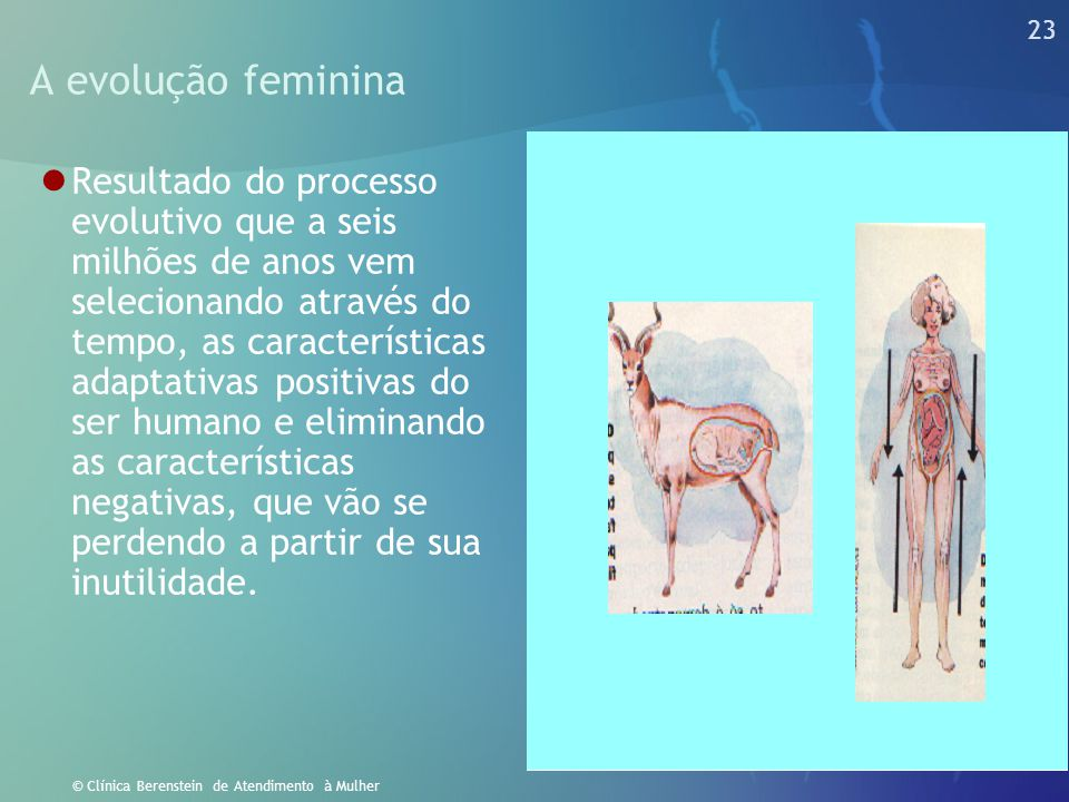 A evolução feminina