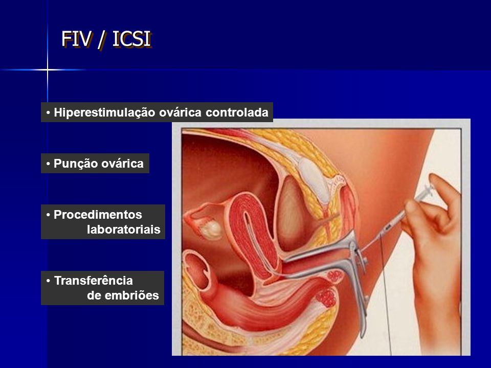 FIV / ICSI Hiperestimulação ovárica controlada Punção ovárica