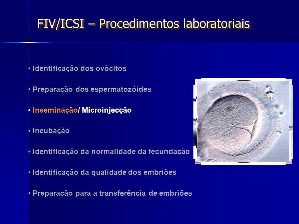 FIV/ICSI – Procedimentos laboratoriais