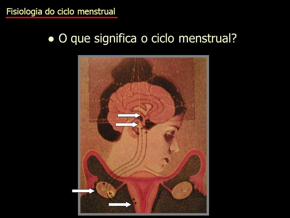 ● O que significa o ciclo menstrual
