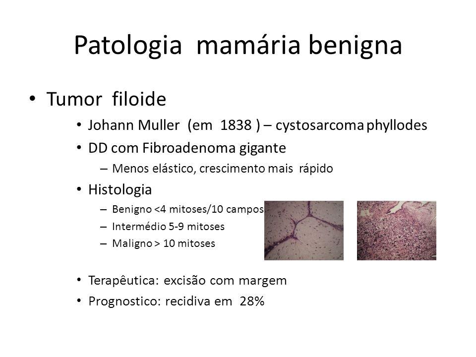 Patologia mamária benigna