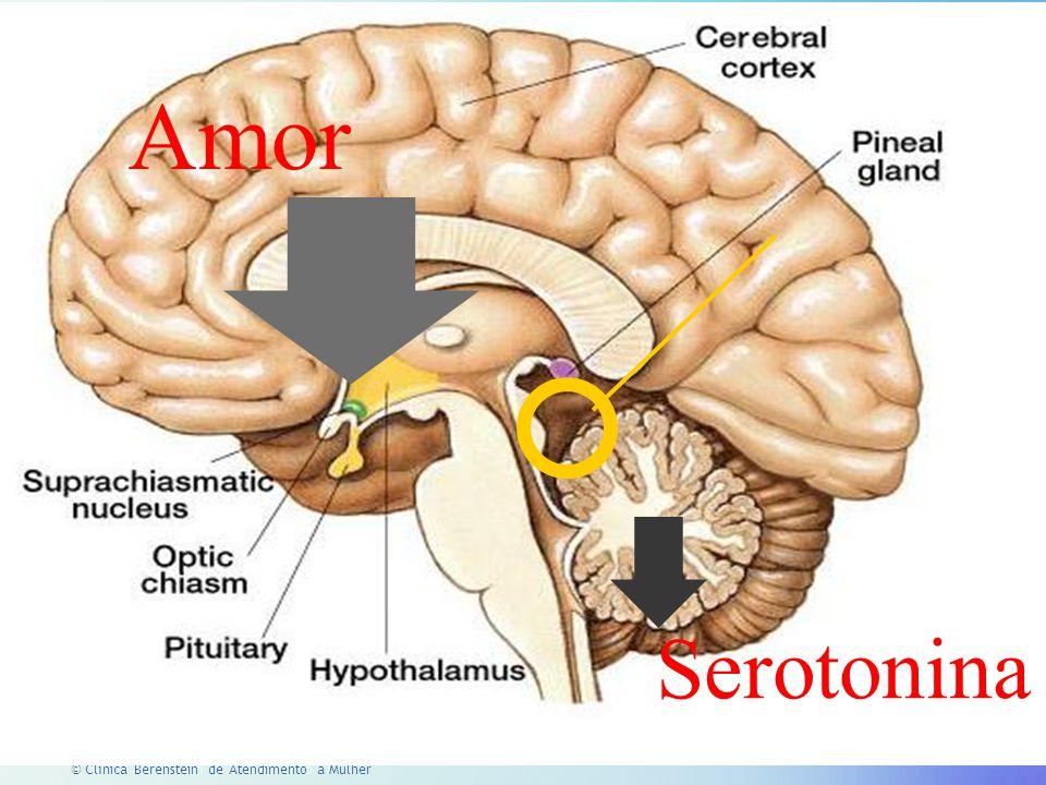 Amor Serotonina