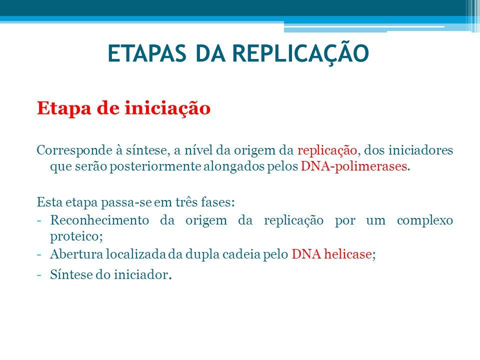 ETAPAS DA REPLICAÇÃO Etapa de iniciação