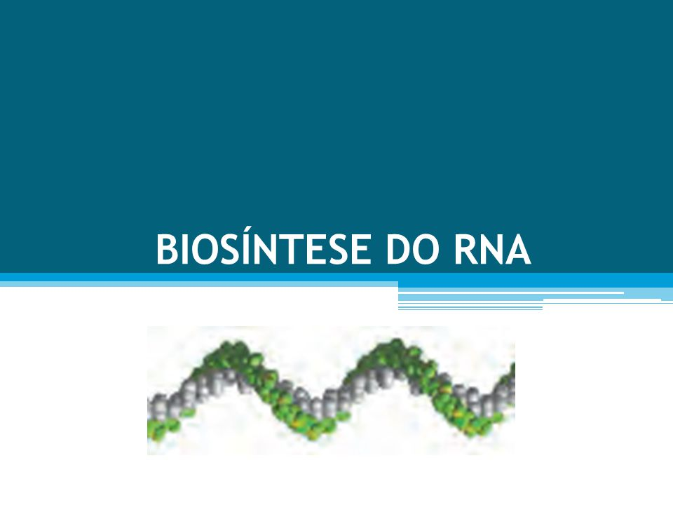 BIOSÍNTESE DO RNA