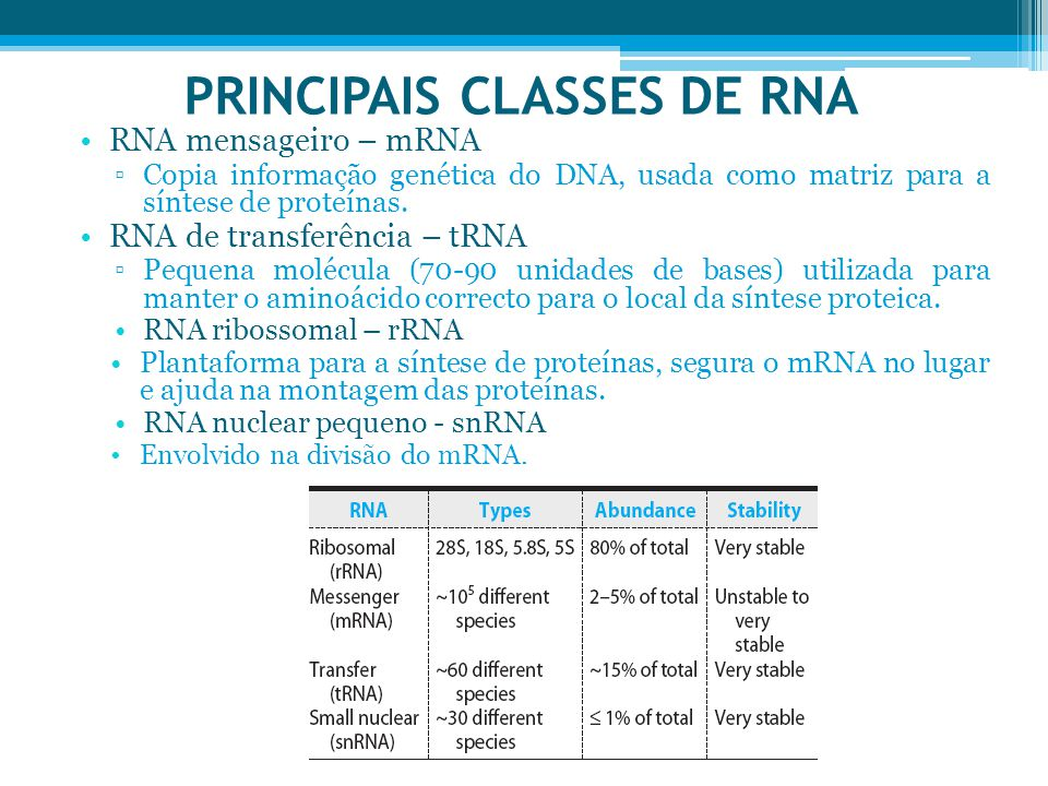 PRINCIPAIS CLASSES DE RNA