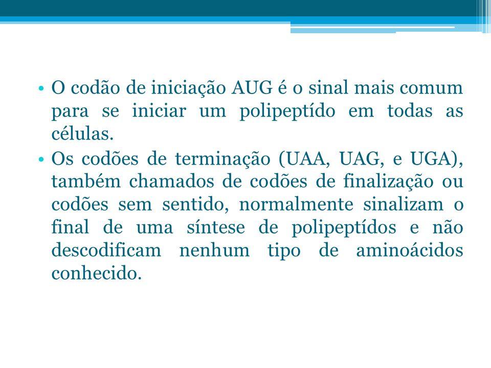 O codão de iniciação AUG é o sinal mais comum para se iniciar um polipeptído em todas as células.