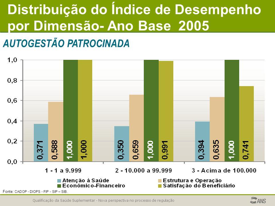 Distribuição do Índice de Desempenho por Dimensão- Ano Base 2005