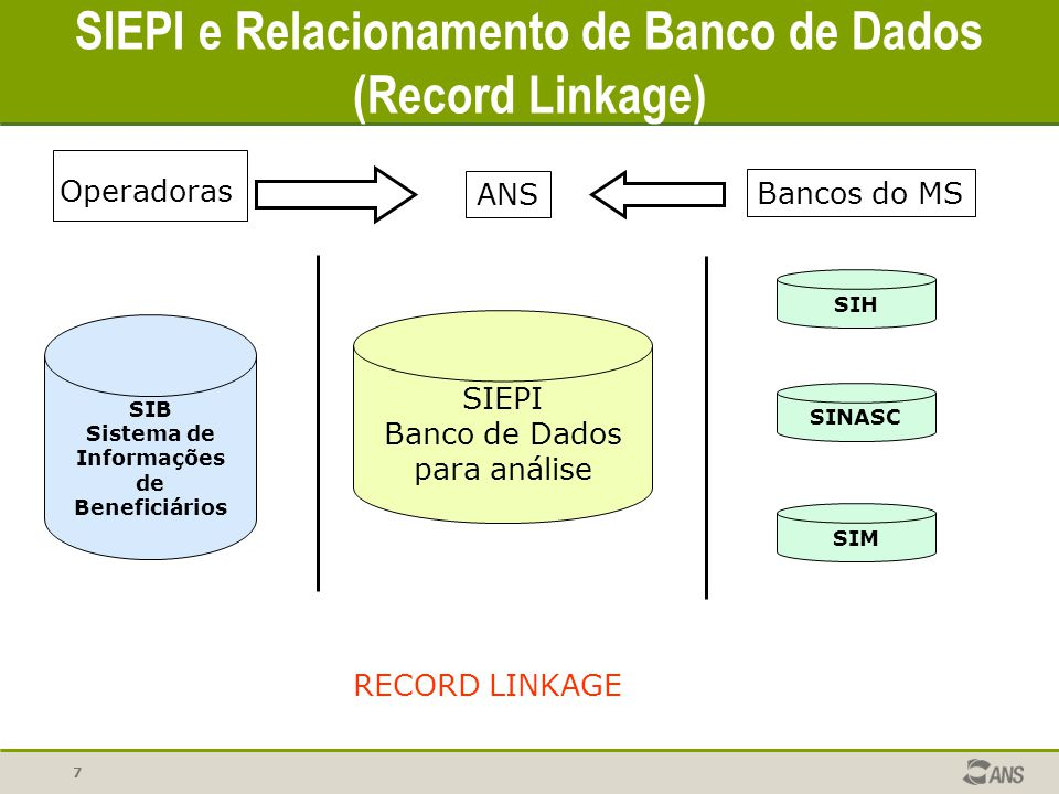 SIEPI e Relacionamento de Banco de Dados (Record Linkage)