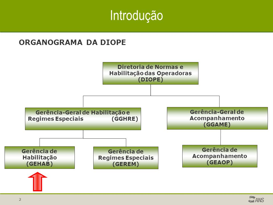 Introdução ORGANOGRAMA DA DIOPE