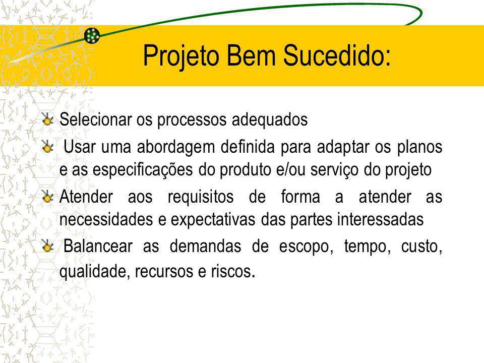 Projeto Bem Sucedido: Selecionar os processos adequados