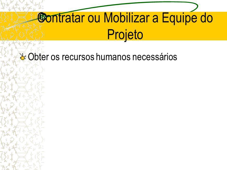 Contratar ou Mobilizar a Equipe do Projeto