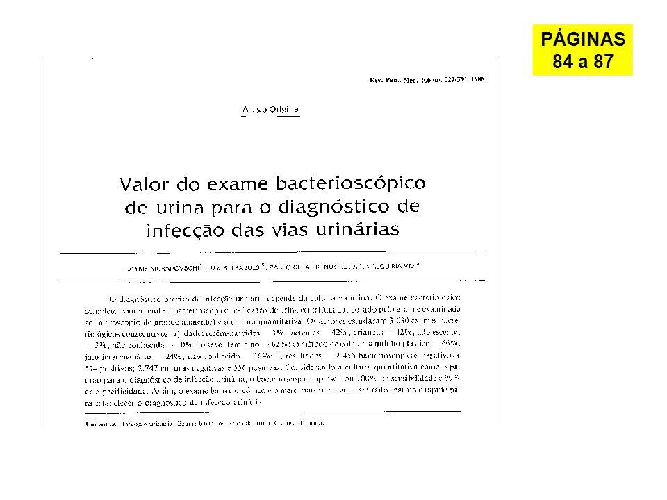 PÁGINAS 84 a 87