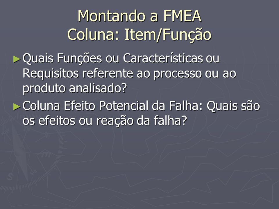 Montando a FMEA Coluna: Item/Função