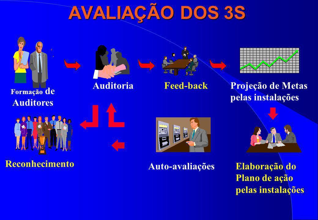 AVALIAÇÃO DOS 3S Auditoria Feed-back Projeção de Metas
