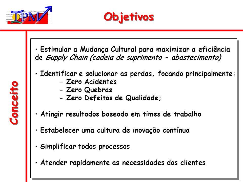 Objetivos Estimular a Mudança Cultural para maximizar a eficiência de Supply Chain (cadeia de suprimento - abastecimento)