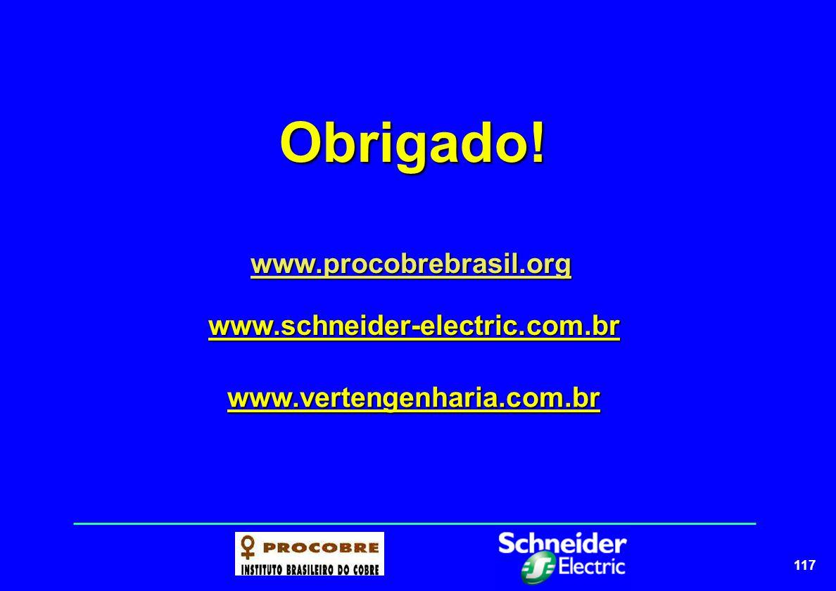Obrigado! www.procobrebrasil.org www.schneider-electric.com.br