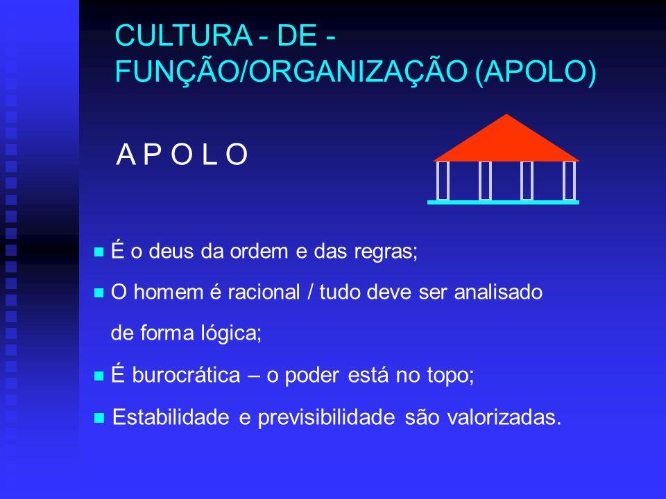CULTURA - DE - FUNÇÃO/ORGANIZAÇÃO (APOLO)