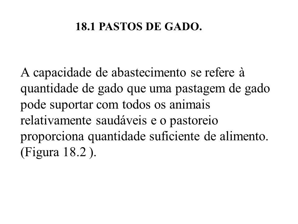 18.1 PASTOS DE GADO.