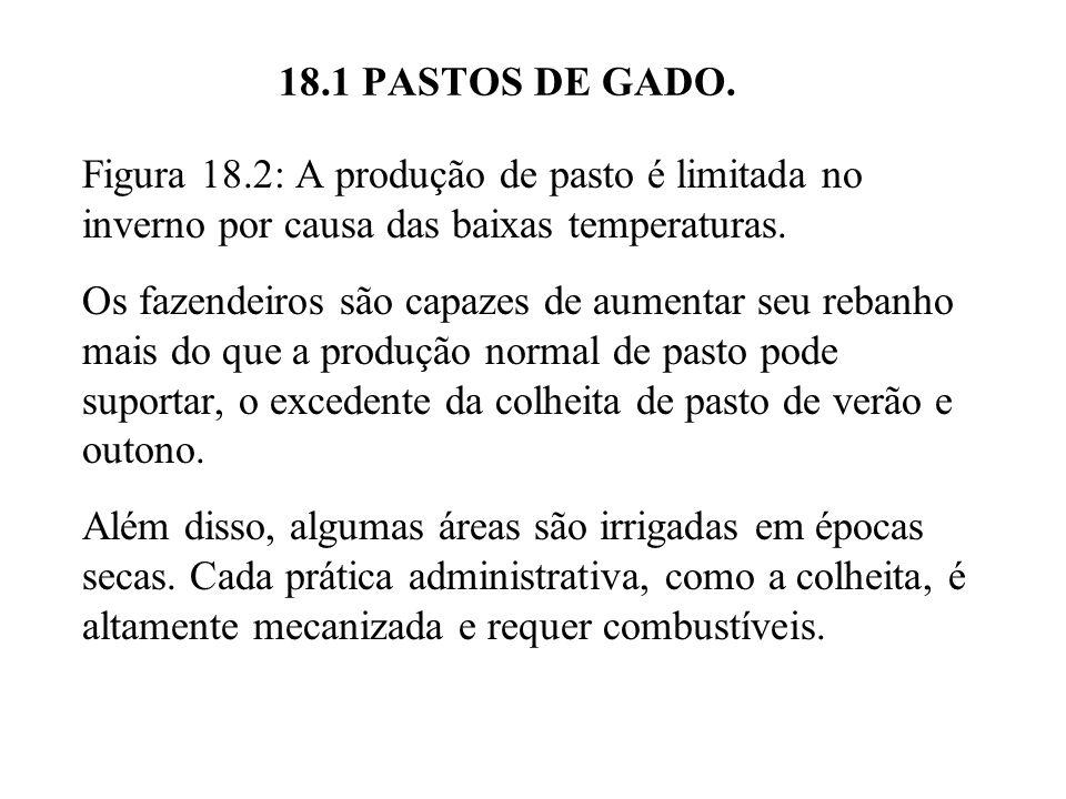 18.1 PASTOS DE GADO. Figura 18.2: A produção de pasto é limitada no inverno por causa das baixas temperaturas.