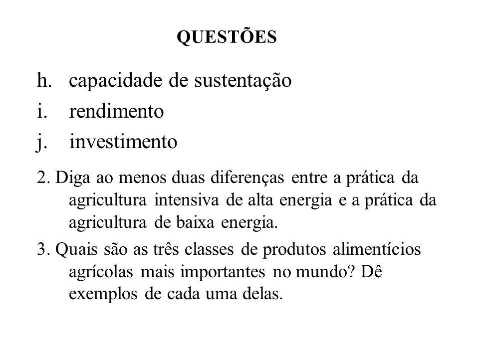 h. capacidade de sustentação i. rendimento j. investimento
