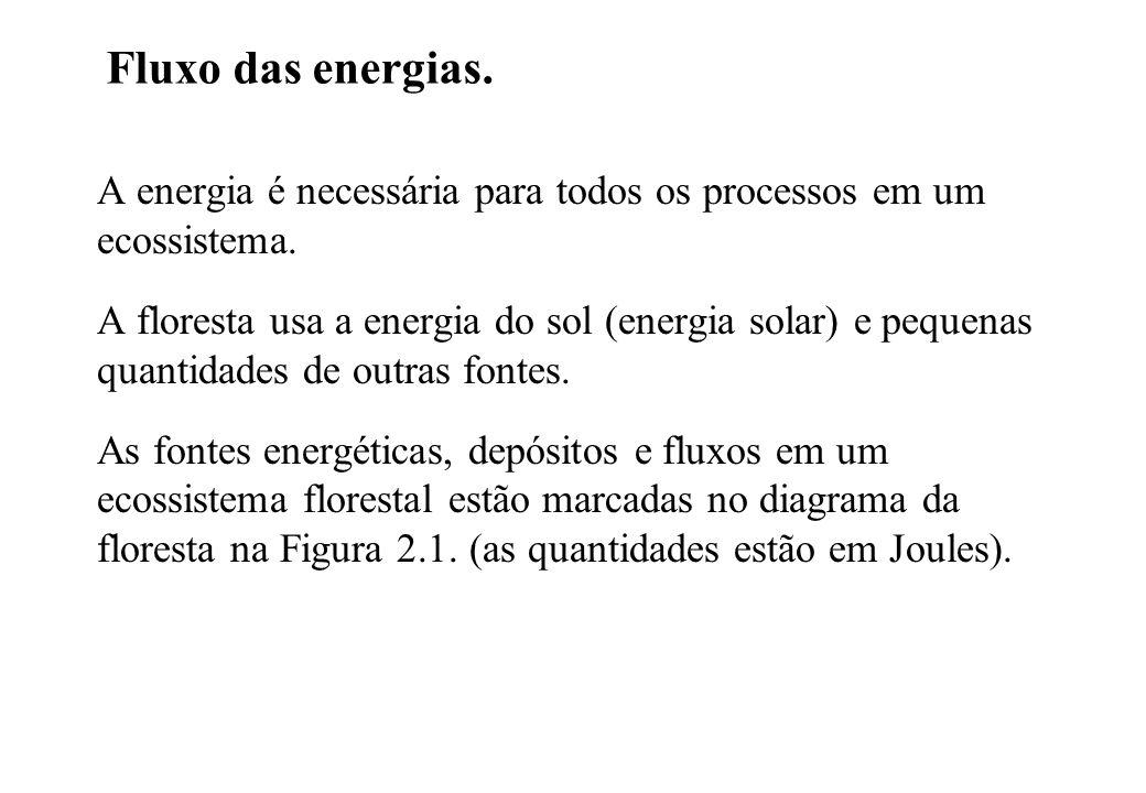 Fluxo das energias. A energia é necessária para todos os processos em um ecossistema.