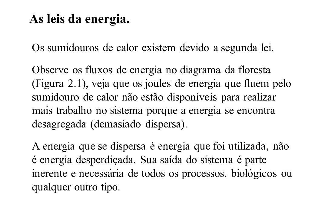 As leis da energia. Os sumidouros de calor existem devido a segunda lei.