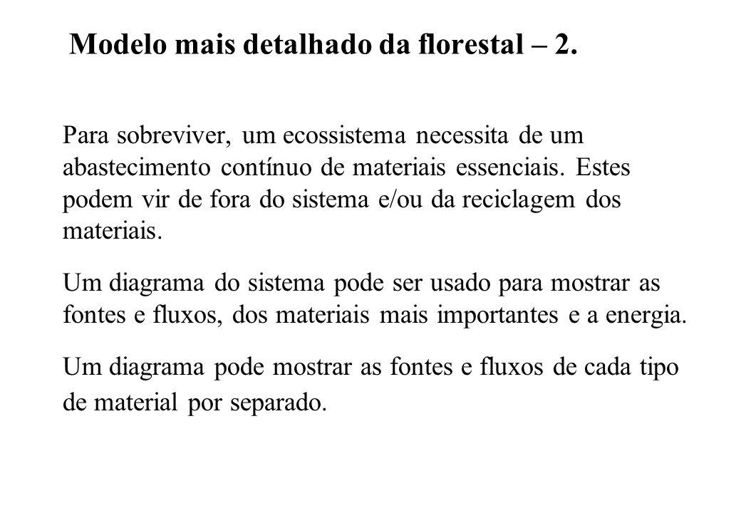 Modelo mais detalhado da florestal – 2.
