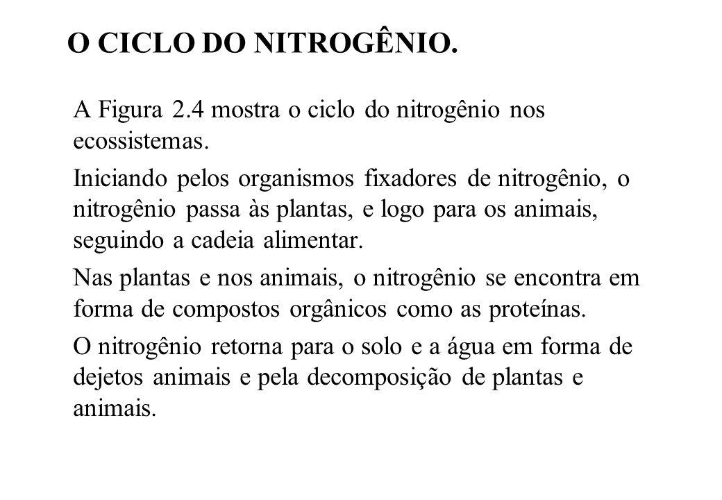 O CICLO DO NITROGÊNIO. A Figura 2.4 mostra o ciclo do nitrogênio nos ecossistemas.