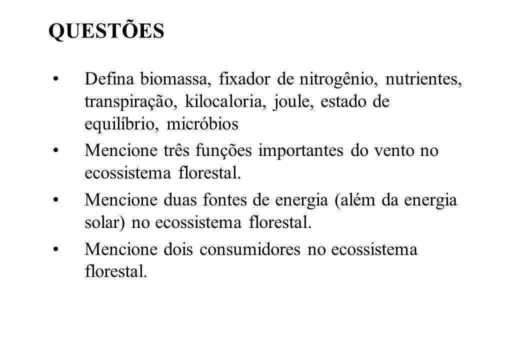 QUESTÕES Defina biomassa, fixador de nitrogênio, nutrientes, transpiração, kilocaloria, joule, estado de equilíbrio, micróbios.