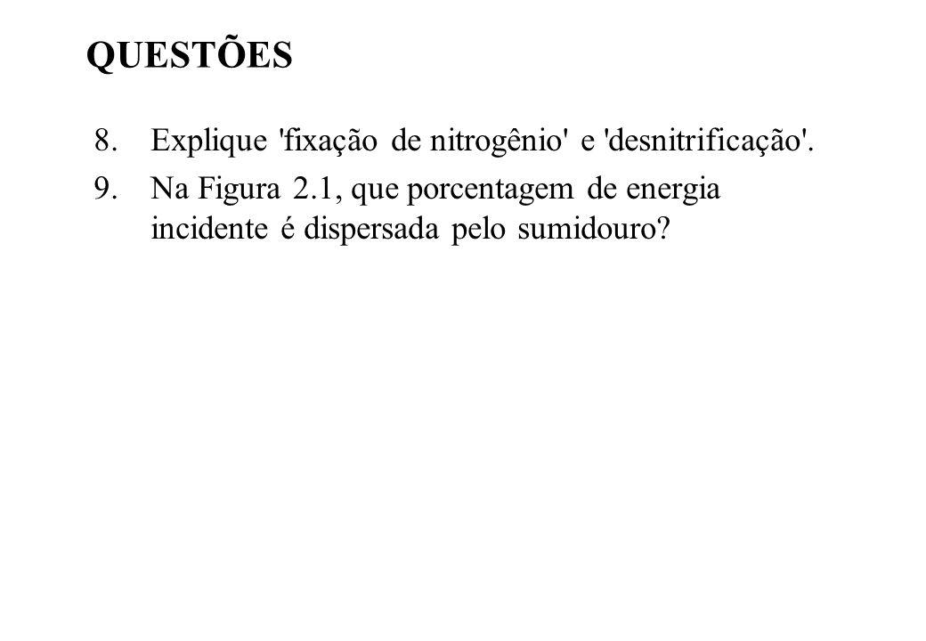 QUESTÕES Explique fixação de nitrogênio e desnitrificação .