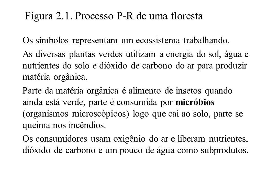 Figura 2.1. Processo P-R de uma floresta