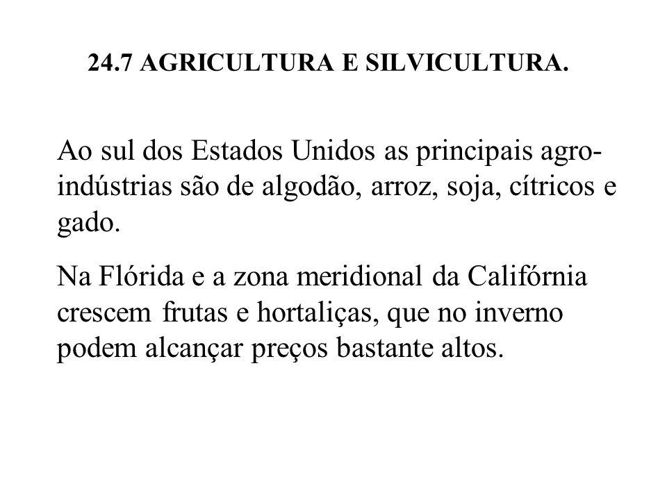 24.7 AGRICULTURA E SILVICULTURA.