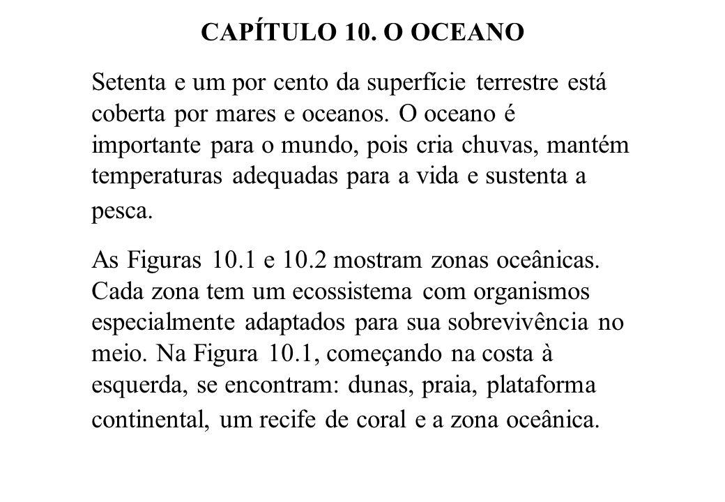 CAPÍTULO 10. O OCEANO