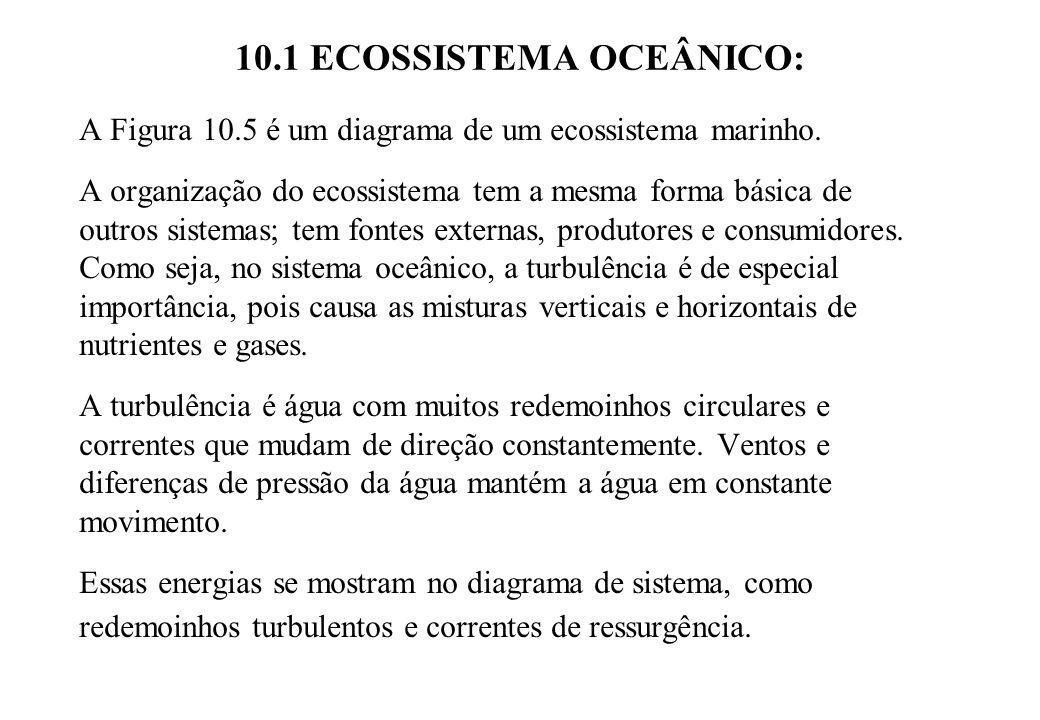 10.1 ECOSSISTEMA OCEÂNICO: